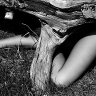Nude beneath tree 1985