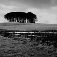 wiltshire-england-1996