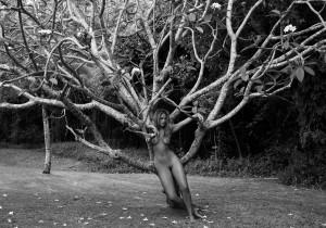 philippa, barbados, tree 2007
